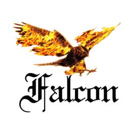 Horizon Falcon